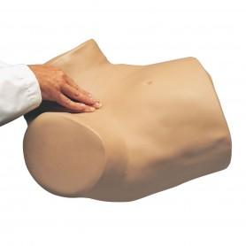 Simulateur gynécologique Gyn/Aid®