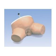 Simulateur d'accouchement